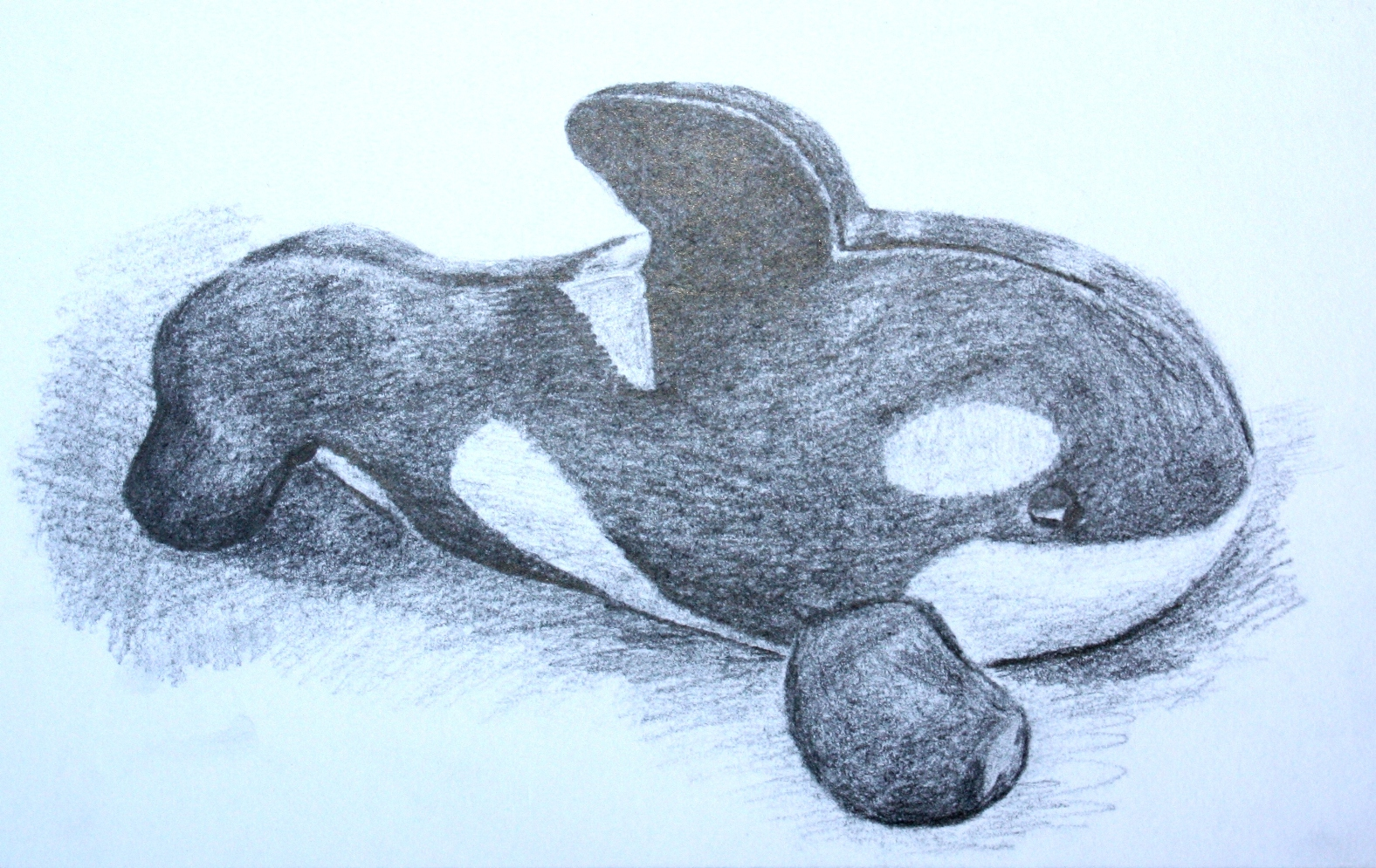Whale toy drawing