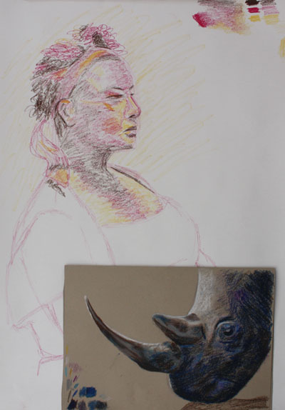 Second large drawing with rhino for comparison