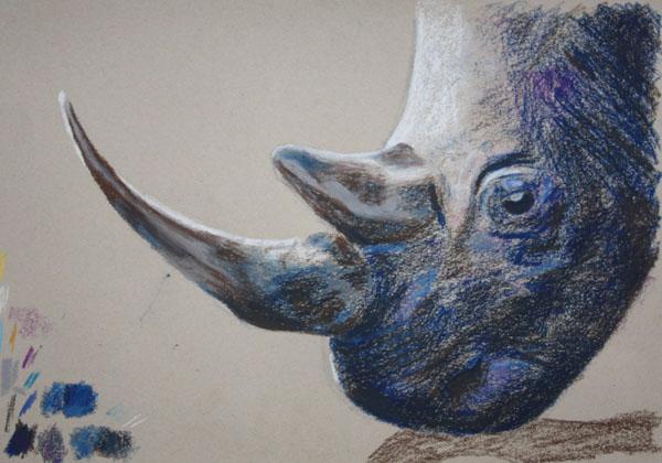 Rhino in oil pastels