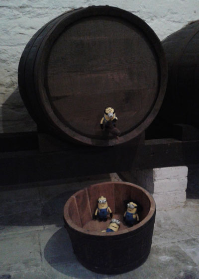 Minions in beer cellar
